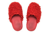 Red slippers. Isolated on white. poster