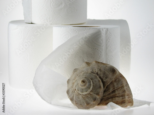 Toilet Paper Rolls with seashell