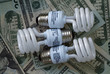 Save electricity and money with compact Fluorescent light bulbs