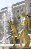 Fountain in Petrodvorets (Peterhof), St Petersburg, Russia. poster