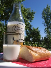 Still life with a bottle, a glass and bread