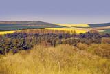 typical pas-de-calais countryside  poster