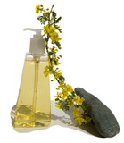 Soft Soap with Palo Verde Twig poster