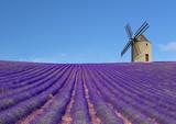 Fototapety Moulin et champs de lavande