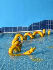 pool 1_0608