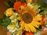 Fototapety Attractive bouquet of flowers
