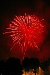 Fuochi artificiali fireworks