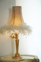 Lamp shade with feathers of a desk lamp
