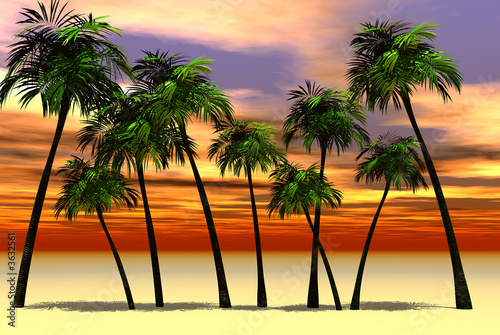 3D render of palm tree