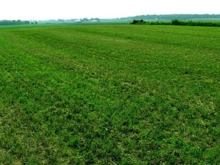 Midwest Farmland