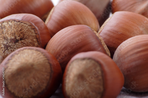 Nuts. Shot in a studio. .