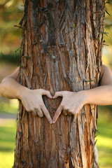 environmentalist hugging pine tree and making a heart.