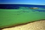 Blick vom Eagel Bluff in die Shark Bay Australien_07_1332 poster