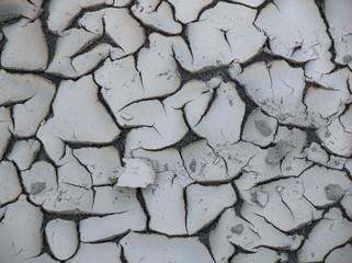 fango crosta siccità
