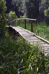 Woods Bridge in summer day