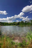 summer countryside with pond/lake and blue sky/clouds poster