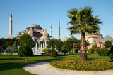 park with palm near of Holy Wisdom mosque in Istanbul poster