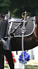 Military-Riderless Horse
