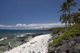 Girl walking along Azure Hawaiian Volcanic Coast of Kona Island poster