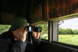 Man looking through binoculars in a birdwatching hideout poster
