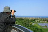 Man looking through binoculars at a natural wetland area poster