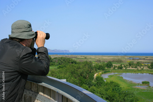 Man looking through binoculars at a natural wetland area