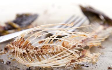 fishbones on plate