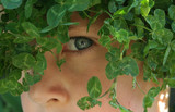 Close-up of a young boy camouflaged with greenery poster