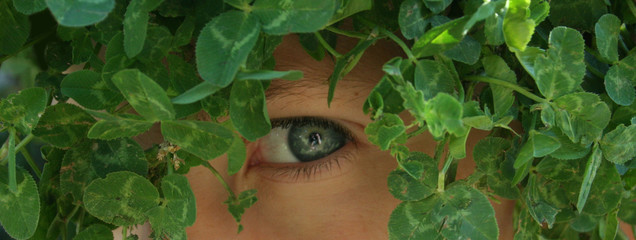 Close-up of a young boy camouflaged with greenery