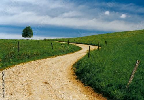 Leinwanddruck Bild der Weg
