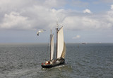 Sailing on the waddenzee poster