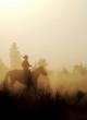 Peaceful Cowboy