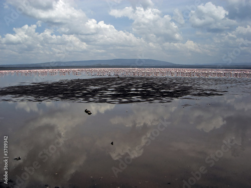 Famous lake Nakuru with million of pink flamingos.