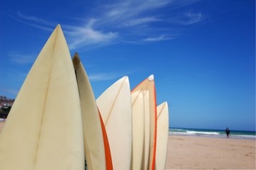 A rack of surfboards on a beach.