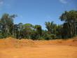 Abholzung Regenwald, Amazonas - Brasil