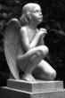 kleiner.engel