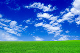 The green field and blue sky.