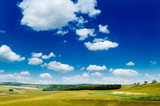 The pasture, blue sky, clouds. poster