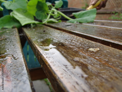 wet table