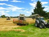 zwei grüne Mähdrescher und Traktor ernten ein Getreidefeld ab