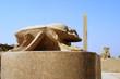 Scarab near the Sacred Lake at Karnak temple Luxor Egypt
