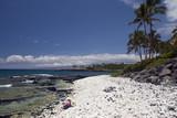 Girl Sitting on Azure Hawaiian Volcanic Coast of Kona Island poster