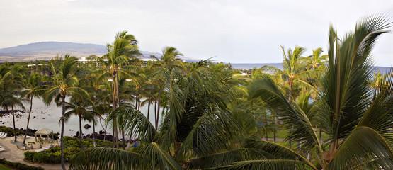 Volcano in the Clouds on Kona Island, Hawaii; Panorama