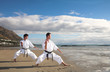 Young adult men with black belt practicing a Kata