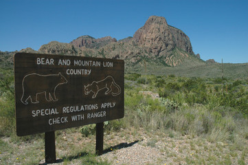 A bear and mountain lion warning sign in Big Bend National Park.