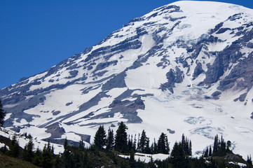 View of Mount Rainier from Paradise