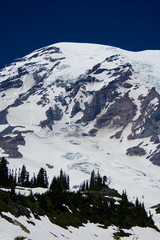 View of the Mount Rainier from Paradise
