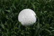 Golfball in the grass