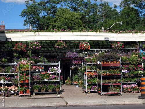 Outdoor garden centre