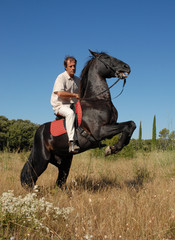 homme a cheval